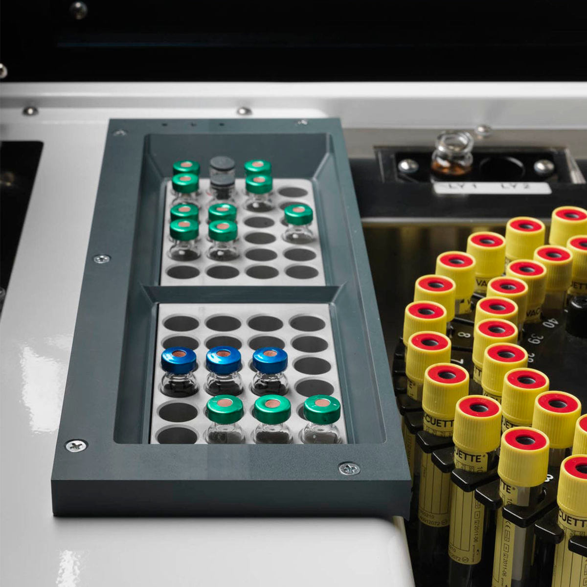 Bacterial identification system