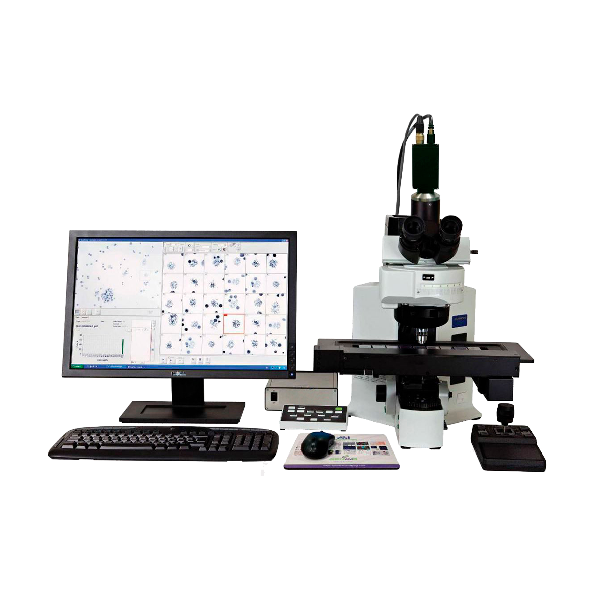 Cell imaging system